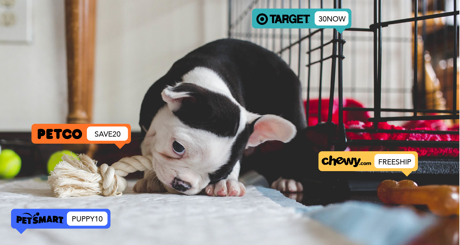 If You Buy Pet Food and Supplies Online, This App Could Save You a Fortune